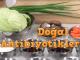 doğal antibiyotik doğal antibiyotik Doğal Antibiyotik Bitkiler, Yiyecekler ve Besinler do  al antibiyotik bitkiler 80x60