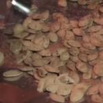 faydaları kabak çekirdeği kabak çekirdeği Kabak Çekirdeği Kalorisi Kilo Yapar mı ve Faydaları kabak   ekirde  i