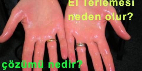 el terlemesi neden olur