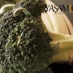 lifli besinler zengin faydaları posalı yiyecek Posalı Yiyecekler Listesi Neler? posal   yiyecek brokoli