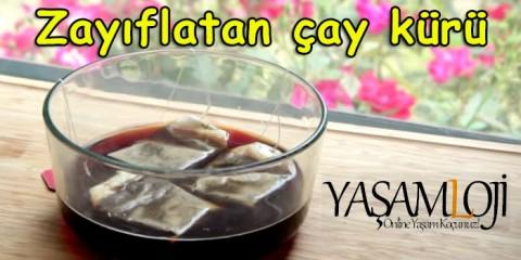Taylan Kümeli Zayıflama Bitkisel Çay Kürü