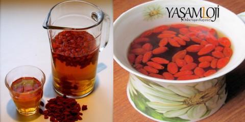 goji berry çayı ile zayıflama