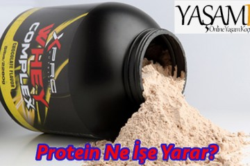 protein ne işe yarar